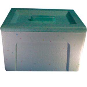 Caja térmica 4