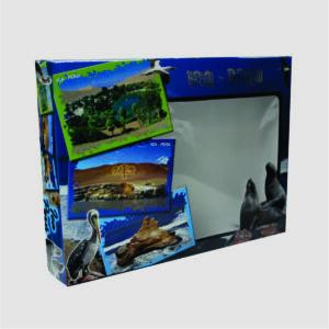Caja 12 Chocotejas Turistica